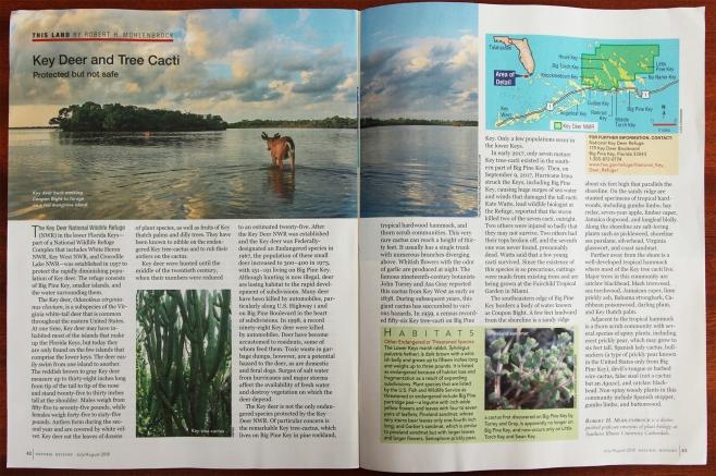 Natural History Mag Toro