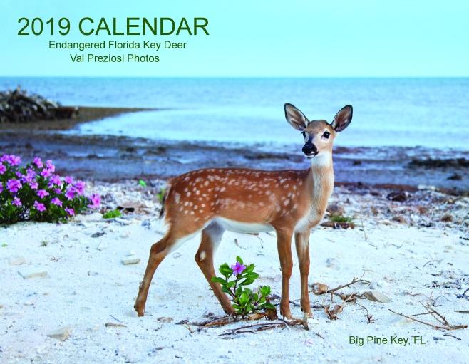 #3 Calendar 2015